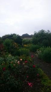 Ansicht des Gartens Nr.66